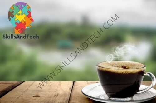 Dutch Bros Franchise In India Cost, Profit, How To Apply, Investment, Requirements | SkillsAndTech