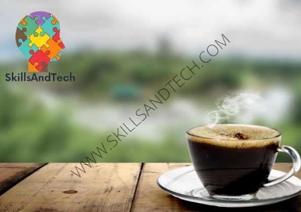 Dutch Bros Franchise In India Cost, Profit, How To Apply, Investment, Requirements   SkillsAndTech