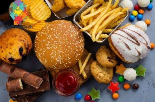 Fast Food Business In India Cost, Profit, Requirement | SkillsAndTech