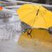 Umbrella Business How To Start, Cost, Profit, Requirements   SkillsAndTech