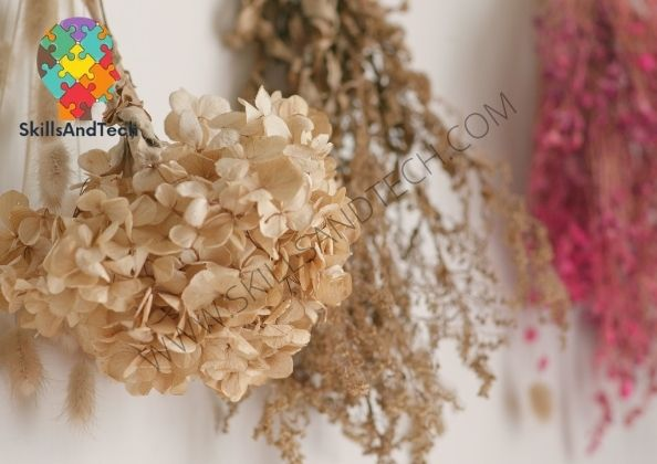 Dried Flower Business, How to start and Profit | SkillsAndTech