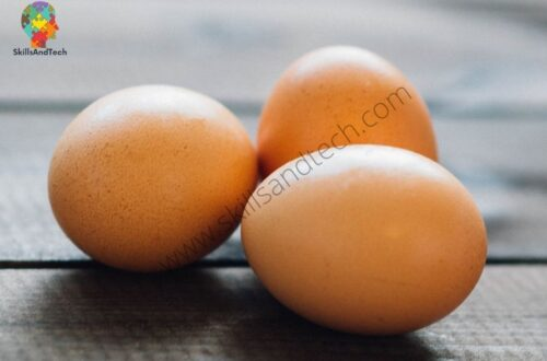 Egg Business in India, Marketing, Profits, How To Apply | SkillsAndTech