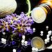 How to Open Homeopathic Clinic, Profits, Investment | SkillsAndTech