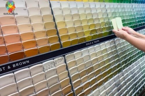 Paint Shop Business, How to Start, License, Marketing Strategy, Cost | SkillsAndTech