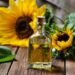 Sunflower Oil Business In India, Plan, Cost, Profit, Requirements | SkillsAndTech