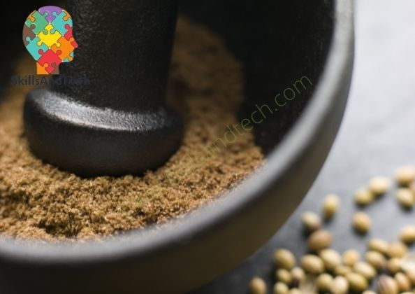 Dhania Powder Making Business In India Cost, Profit, Business Plan, Requirements | SkillsAndTech